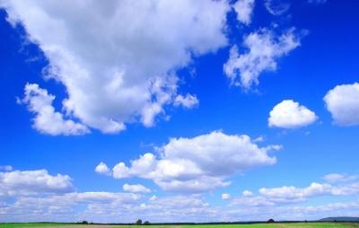 rgn-5323 2540x4000 dangus nebo debesys tuchi pole laukas medziai derevija