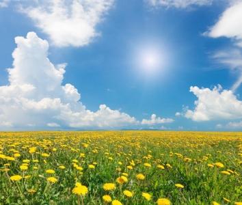 rgn-5334 2540x3000 geles svety dangus nebo saule sonce debesys oblaka pole laukas