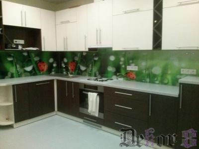virtuvinis-stiklas-254