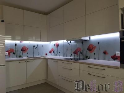 virtuvinis-stiklas-286