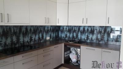 virtuvinis-stiklas-290