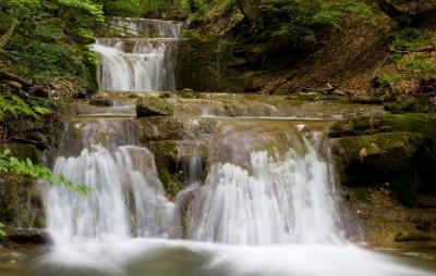 rgn-5477 2540x4000 vodopad krioklis vanduo voda medziai derevija akmenis kamni