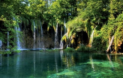 rgn-5478 2540x4000 krioklis vodopad vanduo voda medziai derevija