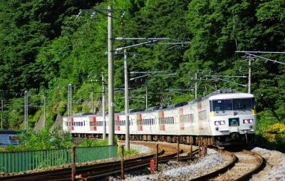 wps-1000-2364 tap 2540x4000 medziai derevija poezt traukinys