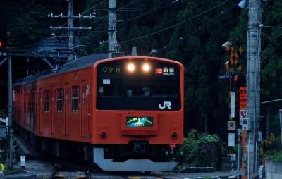 wps-1000-2376 tap 2540x4000 poezt traukinys